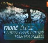 Elegie & Chefs-D Oeuvre Violoncelle