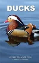 Ducks Weekly Planner 2016