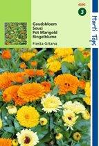 2 stuks Calendula Officinalis Fiesta Gitana Gemengd