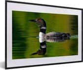 Foto in lijst - Reflectie van een Ijsduiker fotolijst zwart met witte passe-partout 60x40 cm - Poster in lijst (Wanddecoratie woonkamer / slaapkamer)