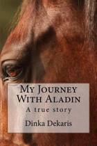 My Journey with Aladin