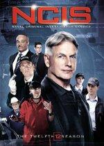NCIS - Seizoen 12, (DVD). DVDNL