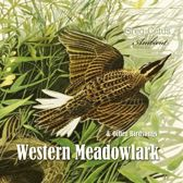 Western Meadowlark and Other Bird Songs