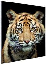 FotoCadeau.nl - Sumatraanse tijgerwelp Aluminium 20x30 cm - Foto print op Aluminium (metaal wanddecoratie)