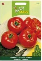 Tomaten Pyros F1 - Lycopersicon esculentum