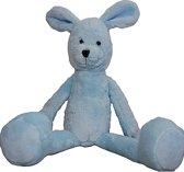 Be Baby Bunny Licht Blauw