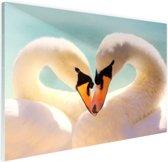 FotoCadeau.nl - Zwanen koppel Glas 30x20 cm - Foto print op Glas (Plexiglas wanddecoratie)