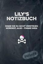 Lily's Notizbuch Dinge Die Du Nicht Verstehen W rdest, Also - Finger Weg!