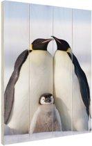 Pinguingezin  Hout 80x120 cm - Foto print op Hout (Wanddecoratie)