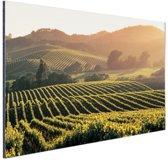 Wijngaarden in de Verenigde Staten Aluminium 30x20 cm - Foto print op Aluminium (metaal wanddecoratie)