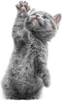 KEK Amsterdam Muursticker kitten morris