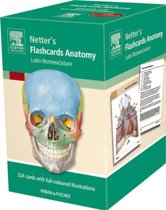 Flashcards Anatomy