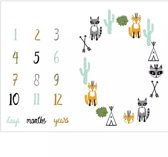 Fotodeken Baby - Milestone Laken - Milestone Deken - Mijlpaal Laken - Milestone Blanket - Kraam Cadeau Pasgeboren Baby - Kerst Cadeau Geboorte -  Geboorte Deken Baby - Kraamcadeau - Vosjes