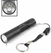 Kleine zon ZY-551 1W LED lichtgevende zaklamp, 1 LED, wit licht, met sleutelhanger (zwart)