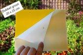 Fentini Gele Vangplaten Set (Extra Groot 20x25 cm) - 20 stuks totaal - vangplaat / lijmval / vangstrip / trips / bladluis / varenrouwmug / witte vlieg