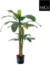 Mica Decorations bananenboom maat in cm: 150 x 85 in plastic pot