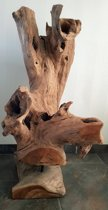 Houten stronk op standaard   Uniek hout stronk   Teak hout  