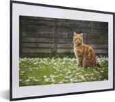 Foto in lijst - Oranje Amerikaanse Korthaar tussen de bloemen fotolijst zwart met witte passe-partout klein 40x30 cm - Poster in lijst (Wanddecoratie woonkamer / slaapkamer)