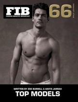 Top Models Vol 66 Male Legends