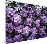 Close-up van paarse koolrabi Canvas 180x120 cm - Foto print op Canvas schilderij (Wanddecoratie woonkamer / slaapkamer) XXL / Groot formaat!