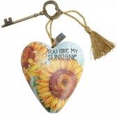 You Are My Sunshine : Beelden & Figuren