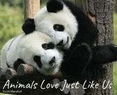 Animals Love Just Like Us