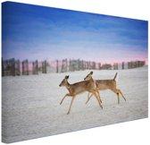 Herten op het strand Canvas 120x80 cm - Foto print op Canvas schilderij (Wanddecoratie woonkamer / slaapkamer) / Dieren Canvas Schilderijen