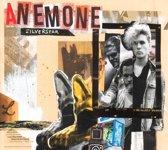 Anemone - Silver Star