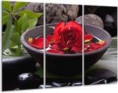 Glasschilderij Roos   Rood, Zwart, Groen   120x80cm 3Luik   Foto print op Glas    F006150