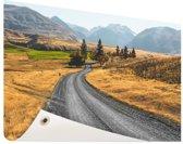 Weg Nieuw-Zeeland  Tuinposter 60x40 cm - klein - Tuindoek / Buitencanvas / Schilderijen voor buiten (tuin decoratie) / Zee en Strand