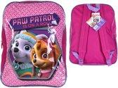 Paw Patrol SkYE & EVEREST Rugzak Rugtas School Tas 6-12 Jaar Groot