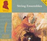 Edition Vol.16-String...
