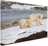 Moeder en zoon ijsbeer Canvas 80x60 cm - Foto print op Canvas schilderij (Wanddecoratie woonkamer / slaapkamer) / Dieren Canvas Schilderijen
