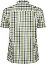 Regatta Mindano III Shirt - Heren - Groen