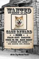 Akita Dog Wanted Poster