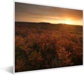 Foto in lijst - Zonsopgang bij het Nationaal park New Forest in Engeland fotolijst wit 50x40 cm - Poster in lijst (Wanddecoratie woonkamer / slaapkamer)
