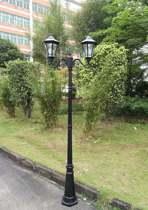 Solar lantaarn 2-lichts Sheffield hoog op zonne energie 4 standen