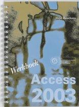 Access 2003 / Werkboek