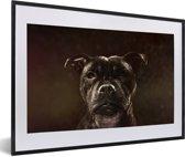 Foto in lijst - Portret van een Staffordshire Bull Terrier fotolijst zwart met witte passe-partout 60x40 cm - Poster in lijst (Wanddecoratie woonkamer / slaapkamer)