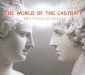 The World Of Castrati - Angel