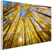 Gele bladeren aan de bomen in het bos Hout 80x60 cm - Foto print op Hout (Wanddecoratie)
