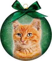 Ornament frosted kat rood
