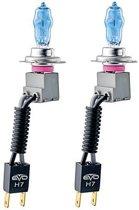 Evo Formance Autolampen Alfas 4300k H7 85 Watt 12 Volt 2 Stuks