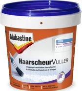 Alabastine Haarscheuren Vuller 250ML
