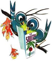 Birds Bon Voyage Card