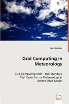 Grid Computing in Meteorology