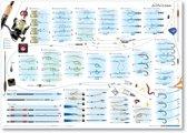 Poster Vissen Witvissen Visposter Witvis Vissenposter