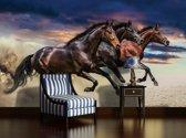 Fotobehang Vlies | Paarden | Bruin | 368x254cm (bxh)
