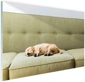 Slapende puppy op de bank Glas 90x60 cm - Foto print op Glas (Plexiglas wanddecoratie)
