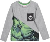 Marvel Avengers The Hulk sweater / trui maat 6 (116cm)
